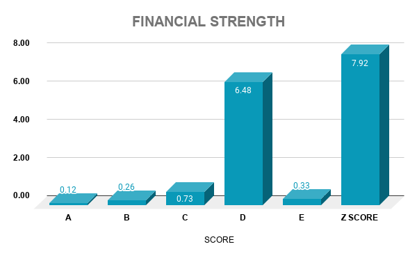 V FINANCIAL STRENGTH